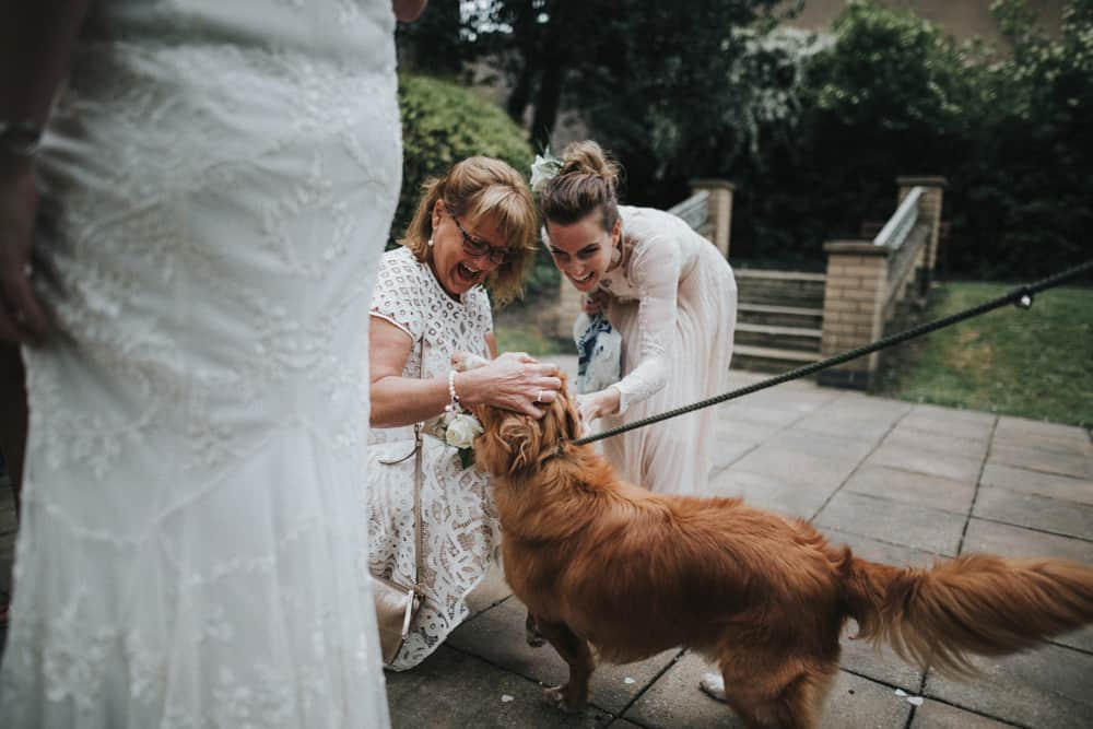Guests greeting the bride & groom's dog