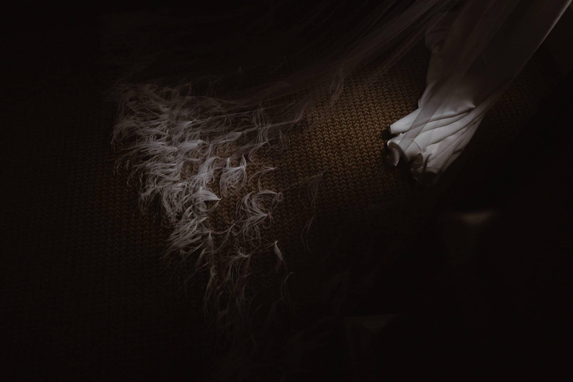 Pronovias Atelier dress with feather veil